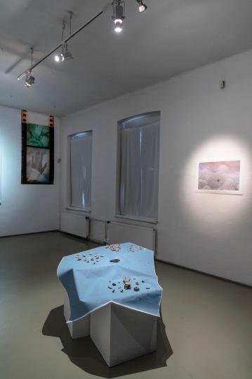 Ester Šabíková, exhibition view MELANCH LIA, PGU Žilina, 2019, photo: Ľuboš Kotlár